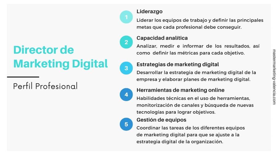Perfil profesional y funciones Director Marketing Digital