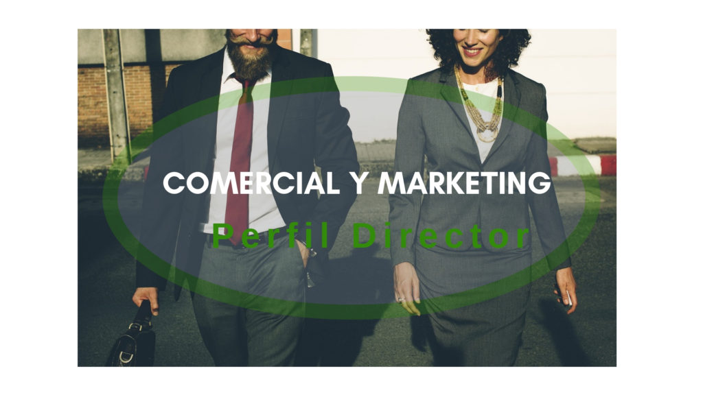 Comercial y Marketing Perfil Director