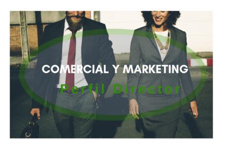 Comercial y Marketing Perfil Director